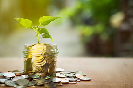 plant-growing-savings-coins-with-green-b