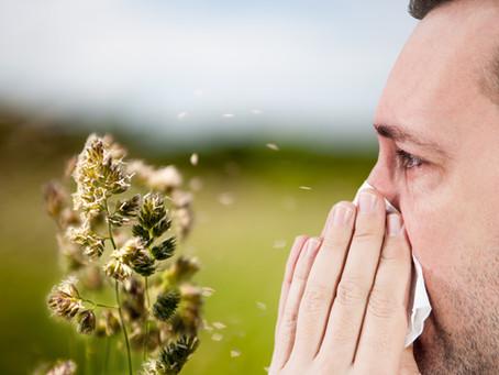 Solutions naturelles aux allergies saisonnières