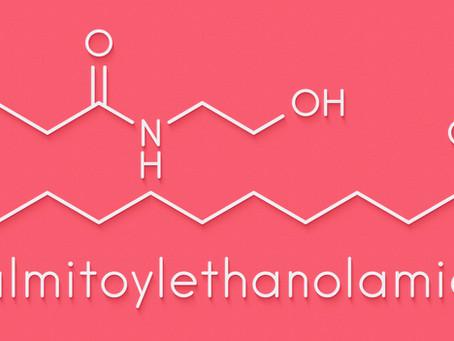 Connaissez-vous les bienfaits du palmitoyléthanolamide (P.E.A.)?