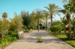 Oasis Parque Landscape gardens