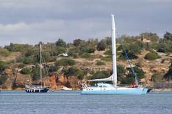 Alvor Estuary 2010 (26)