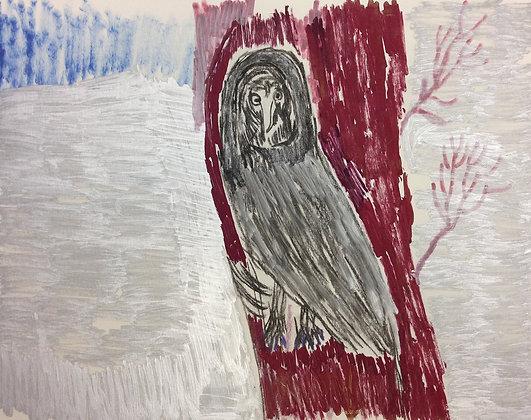 "John Budney-""Barn Owl"""
