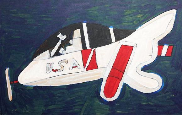 "Steve Robinson- ""Plane"""