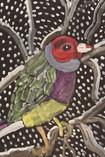 Jocelyn Triggle-Snow Bird