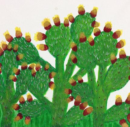 """Zeyneb Johnson- """"Cactus"""""""
