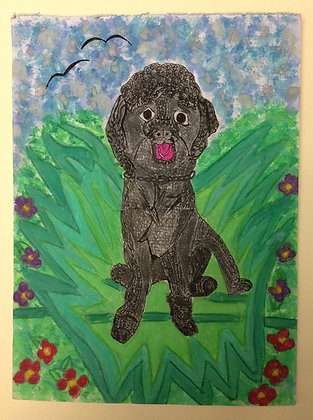 "Kelly Evans- ""Perfect Poodle"""