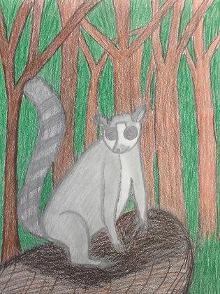 """Zeyneb Johnson- """"Lemur"""""""