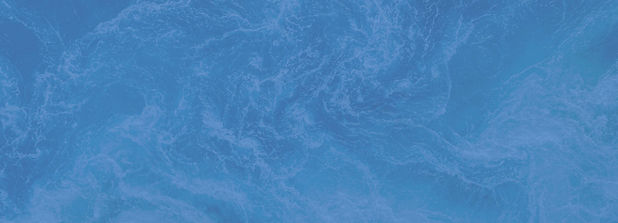 ocean-banner-phytoplankton.jpg