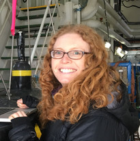 Dr Stephanie Henson