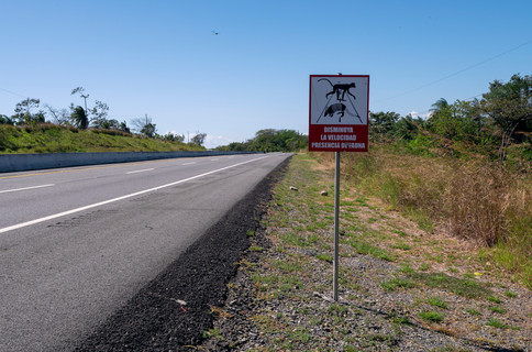 """""""Reduce your speed, presence of wildlife"""" - sign on the Pan-American Highway"""