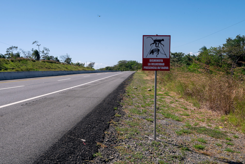 """Reduce your speed, presence of wildlife"" - sign on the Pan-American Highway"