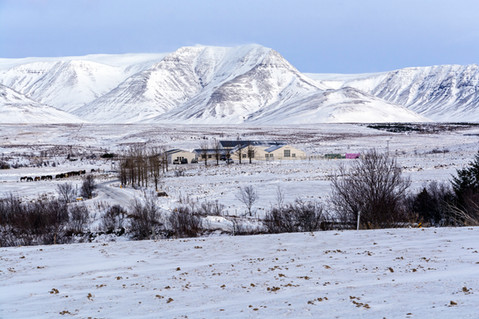 Winter farm and winter mountain scenery in Iceland