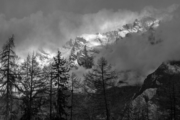 Low clouds over mountains and pine trees, French Alps