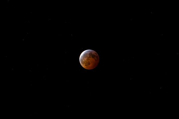 Lunar Eclipse over Toronto, January 2019