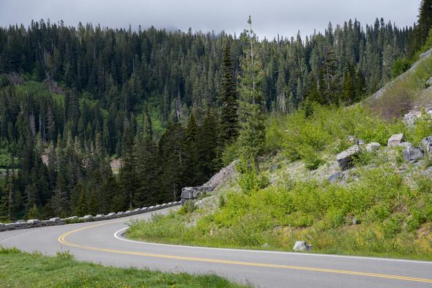 Mountain road in Mount Rainier National Park, Washington