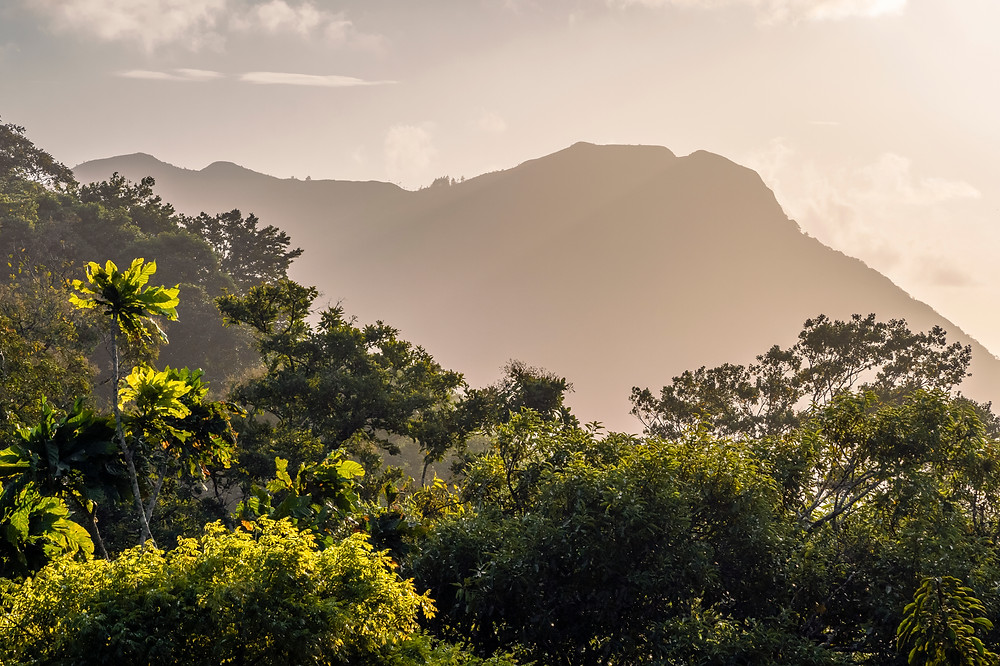 Rainforest and mountain view from the hills of Anton Valley (El Valle) in central Panama