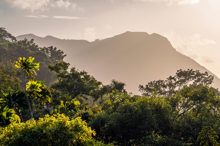 Rainforest view from the hills of Anton Valley, central Panama