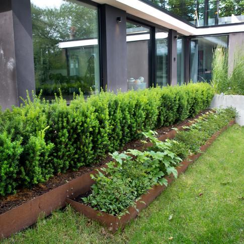 Grönskande trädgård