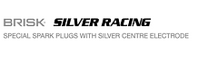 Brisk_Auto_Silver Racing1.png