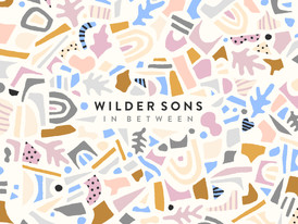 Wilder Sons performs at the final Warped Tour date in FL