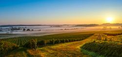 Bordeaux Castle Vista Sunrise