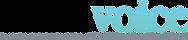 dallas-voice-logo-png_orig.png