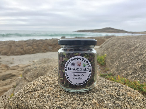 Salade du Cueilleur  / 4 algues