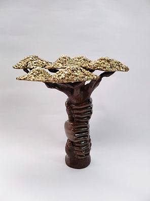 Baobab copie.jpg