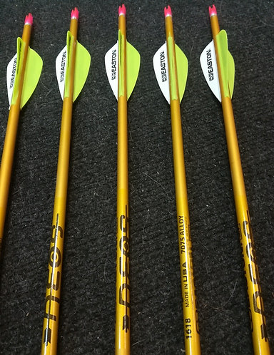6 Pcs - Easton NEOS 1618 Gold Youth Arrow