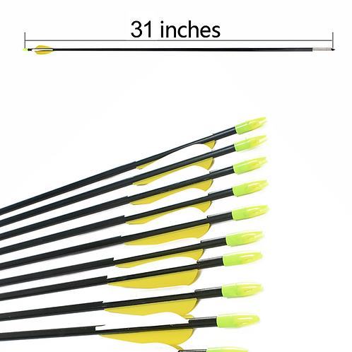 """12 PCS - 31"""" FIBREGLASS ARROW"""