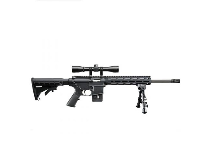 S&W M&P15-22 Sport (as pictured)