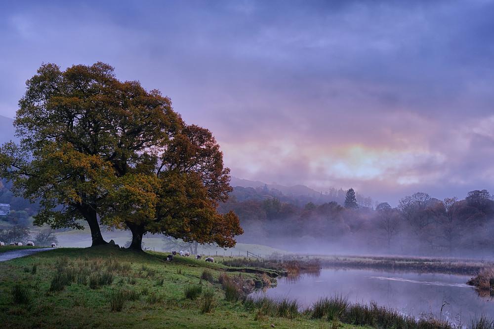 A misty Autumnal sunset