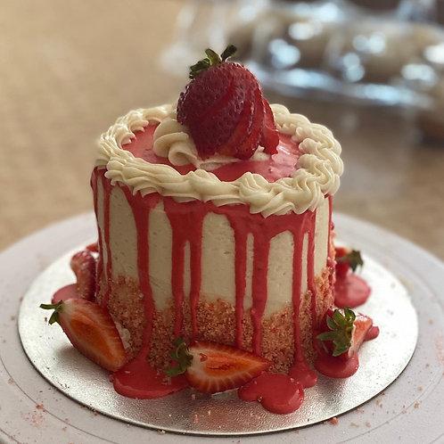 "Mini Specialty Cakes 4"""