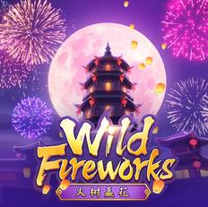 wild-fireworks.webp