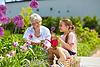flowers gardening retirement