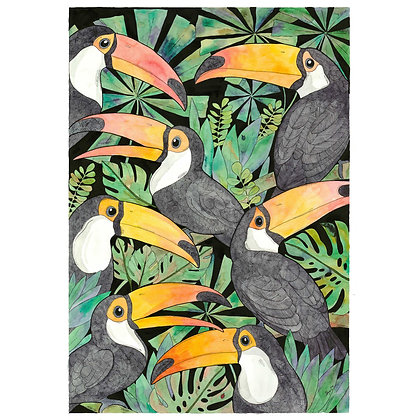 Meeting of the Toucans