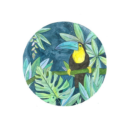 Midnight Toucan (Size: A4)