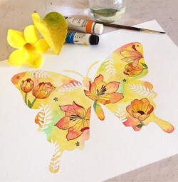 Butterfly Commission