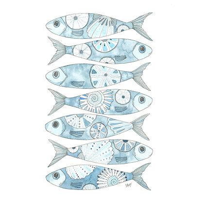 7 Blue Fish