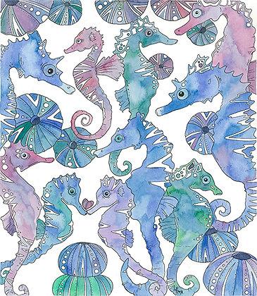 Aguas Seahorse