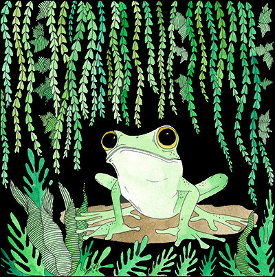 Frog (Size: A4)
