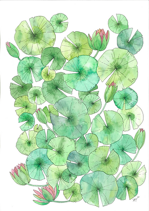 Lily 2 (Size: A3)