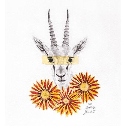 Gazelle (Size: A3)