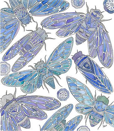 Aguas Cicadas (Size: A3)