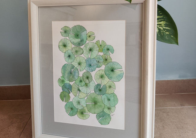 Lily 1 62x50cm