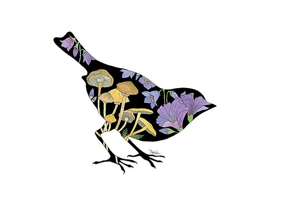 Mushroom Sparrow