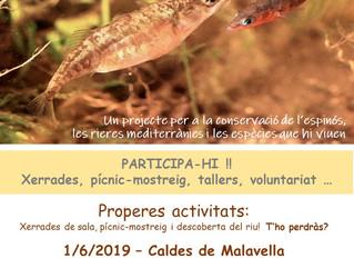 Projecte Escanyagats a Caldes de Malavella