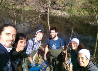 Pel nostre riu Onyar, ben net i polit!