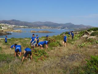 Jornades de voluntariat ambiental per controlar espècies invasores amb el Decathlon