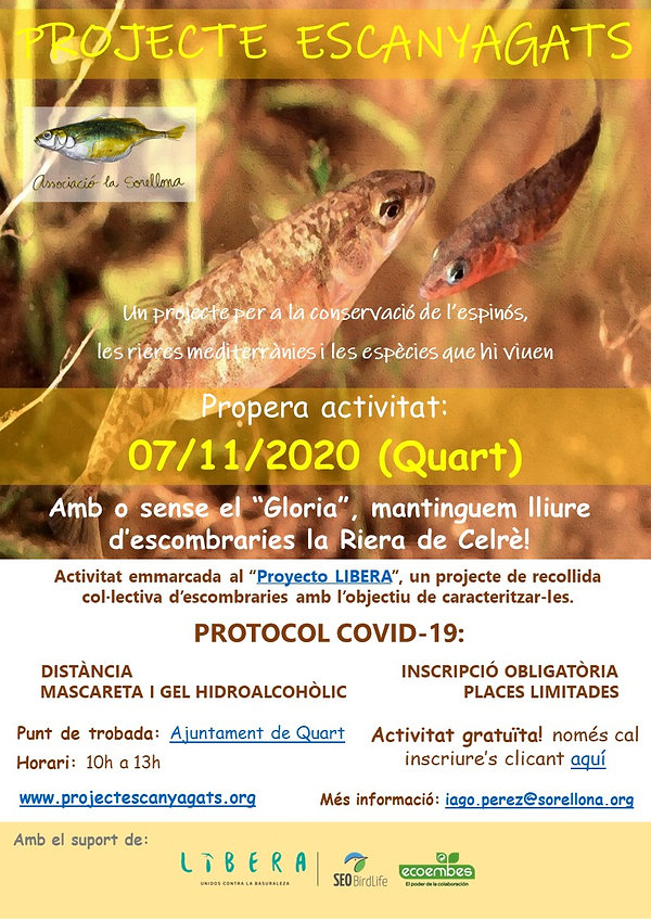2020_11_07_Neteja_Celrè_LIBERA_Quart.jp